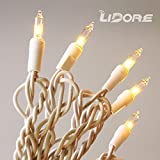 LIDORE 50 Counts Super Bright Clear Mini Christmas tree Lights. Warm White Color. Best Gift for Decoration. End to End Connection. Set of 50