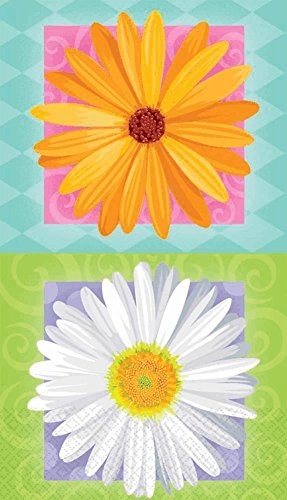 Amscam In Bloom Guest Towels, Multicolor - 1