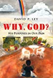 Why, God? His Purposes in Our Pain