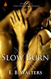 img - for Slow Burn (Contemporary) (The Fitzgerald Family series) book / textbook / text book