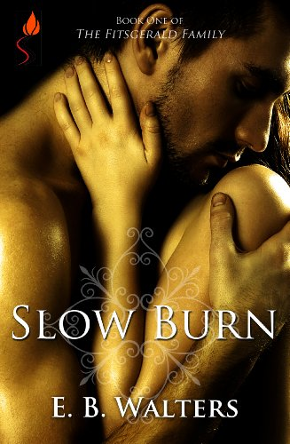 Slow Burn (Contemporary, Romantic suspense, Sensual) (The Fitzgerald Family series) by E.B. Walters