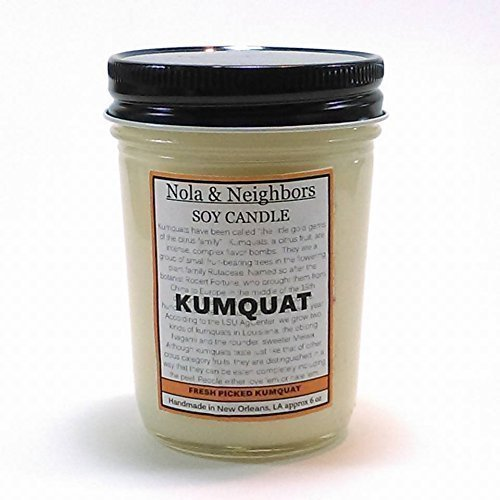 kumquat-candle-citrus-candle-handmade-soy-candle-orange-scent-citrus-fragrance-50-hour-burn-time