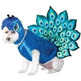 Animal Planet Peacock Dog Costume, Small, Multicolor
