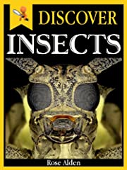 Discover Insects - Fun Facts For Kids