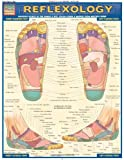 Reflexology (Quick Study Academic Outline)