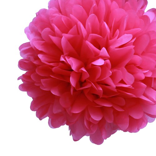 "Dress My Cupcake 14"" Fuchsia Tissue Paper Pom Poms, Set of 4 - Bachelorette Decorations & Party Supplies"