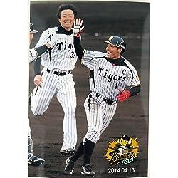 阪神タイガース 鳥谷敬 新井良太 生写真 2014.04.13 サヨナラ