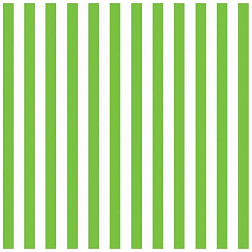 Amscan 221005 Kiwi Stripe Jumbo Gift Wrap - 1
