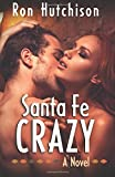 img - for Santa Fe Crazy book / textbook / text book