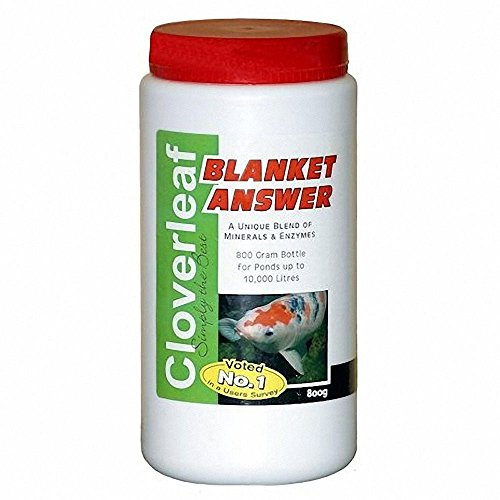 cloverleaf-blanket-answer-800grm