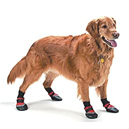 Fashion Pet Lookin Good Extreme All Weather Boots for Dogs, X-Large, Red