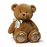 Gund-Baby-Gund-My-1st-Teddy-Plush-Toy-24