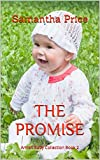 Read The Promise: Amish Baby Romance (Amish Baby Collection Book 2) on-line