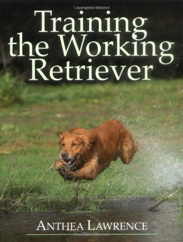 Training The Working Retriever front-77118