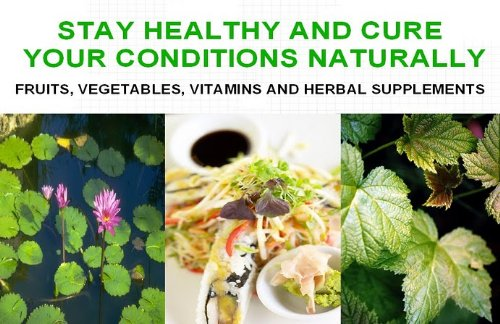 The Complete Herbal Guide: Healing The Body Naturally