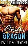 Onyx Dragon (Awakened Dragons Book 1)...