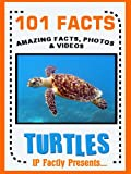 101 Facts... Turtles! Turtle Book for Kids.