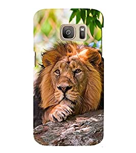 Fuson Premium Back Case Cover Lion on rocks With Multi Background Degined For Samsung Galaxy S7::Samsung Galaxy S7