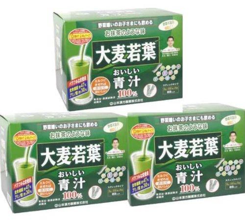 山本漢方製薬 大麦若葉おいしい青汁 シェーカー付 3g×88包入り