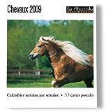 echange, troc collectif - Chevaux 2009