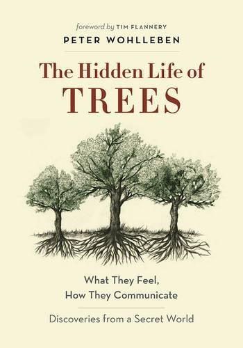The-Hidden-Life-of-Trees-What-They-Feel-How-They-CommunicateDiscoveries-from-a-Secret-World