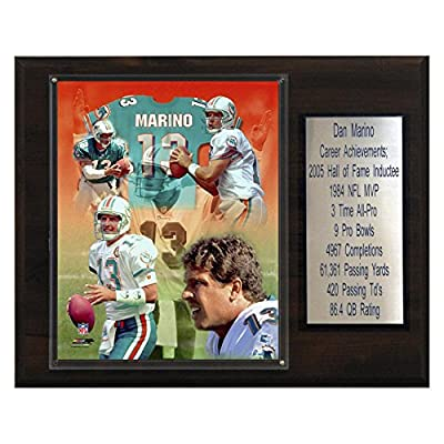 NFL Dan Marino Miami Dolphins Career Stat Plaque