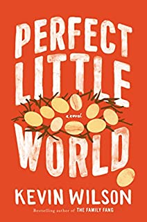 Book Cover: Perfect Little World: A Novel