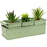 MyGift Metal Floral Design Country Rustic Style Home Garden Planter Box Tray w/ 3 Containers - Green