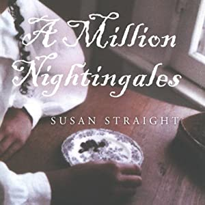 A Million Nightingales | [Susan Straight]