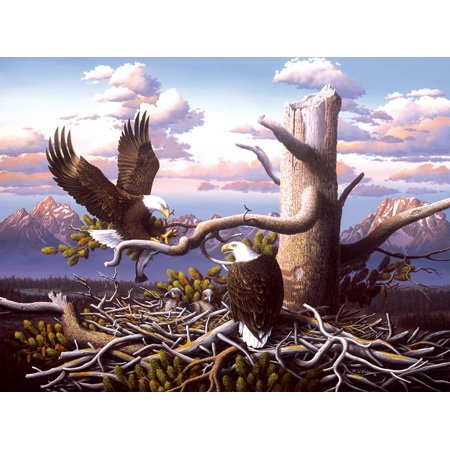 Cheap SunsOut R. W. Hedge Raising Freedom 500pc Jigsaw Puzzle (B001YJYIA4)