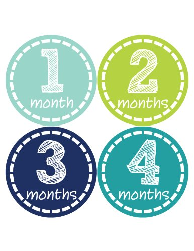 Months in Motion 113 Monthly Baby Stickers Baby Boy 12 Months Milestone Sticker