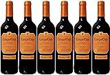 Campo Viejo Reserva Spanish Rioja DOCa Red Wine (Case of 6)