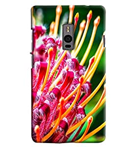 Omnam Flowers Printed Designer Back Cover Case For One Plus Two