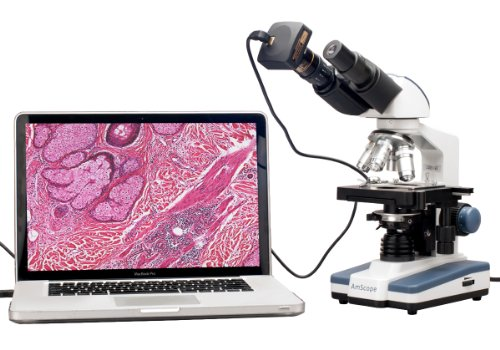 Amscope B120B-3M Digital Siedentopf Binocular Compound Microscope, 40X-2000X Magnification, Brightfield, Led Illumination, Abbe Condenser, Double-Layer Mechanical Stage, Includes 3Mp Camera With Reduction Lens And Software