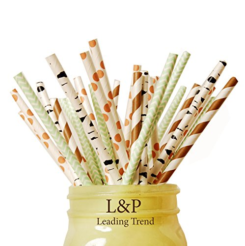 charmed-forest-woodland-animal-theme-paper-straw-in-brown-stripe-green-orange-and-ash-print