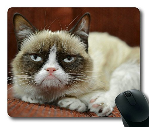 famous-grumpy-cat-just-landed-deal-with-friskies-rectangle-mouse-pad-your-perfect-choice