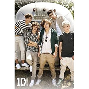 (24x36) One Direction Airstream Music Poster