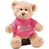Baby Gift Idea G320154 Gund Im The Big Sister Teddy Bear