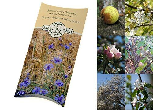 kit-de-graines-verger-sauvage-3-varietes-darbres-fruitiers-sauvages-dans-une-belle-boite-cadeau