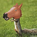 Horse Head Squirrel Feeder AND Food - Ready to Hang - Let the FUN Begin