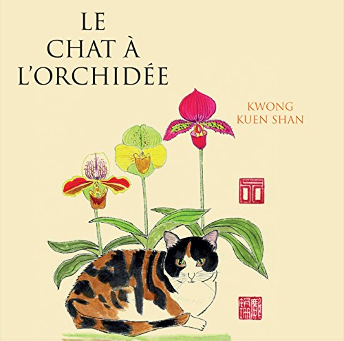 le-chat-a-lorchidee