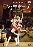 オランダ国立バレエ 「ドン・キホーテ」(ラトマンスキー版 プロローグ付全3幕) [DVD]