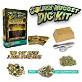Golden Nugget Dig Kit - Excavate Real Specimens!by Discover with Dr. Cool