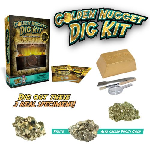 Discover with Dr. Cool Golden Nugget Dig Science