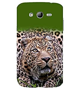 printtech Nature Animal Leopard Back Case Cover for Samsung Galaxy Grand Neo / Samsung Galaxy Grand Neo i9060