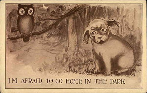 I'M Afraid To Go Home In The Dark Dogs Original Vintage Postcard
