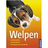 """Welpen: Richtig halten und erziehen, Hundesprache verstehenvon """"Frauke Loup"""""""