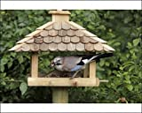 Photographic Prints of Jay – at bird feeding station in garden from Ardea Wildlife Pets