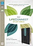 img - for NIV, LifeConnect Study Bible, Imitation Leather, Gray/Blue, Indexed, Red Letter Edition: Growing Deeper, Growing Stronger in Your Spiritual Life book / textbook / text book