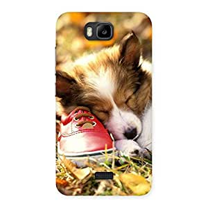 Delighted Cute Sleeping Puppy Back Case Cover for Honor Bee
